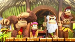 Donkey-Kong-Country-Tropical-Freeze_Switch-