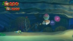 Donkey-Kong-Country-Tropical-Freeze_Switch-11