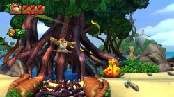 Donkey-Kong-Country-Tropical-Freeze_Switch-3