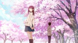 Review: I want to eat your pancreas Blu-Ray